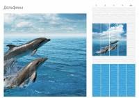 Дельфины/Дельфины фон